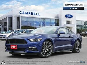 2015 Ford Mustang GT Premium MUST BE SEEN--ONLY1