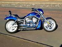 56 Harley Davidson v rod