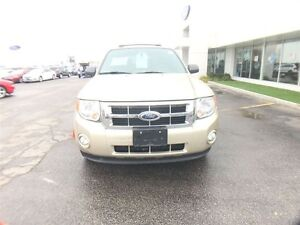 2012 Ford Escape XLT, Gas and Go, Local trade, Car starter!!! Windsor Region Ontario image 4