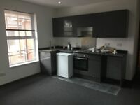 LARGE ONE BEDROOM FLAT AVAILABLE 29.8.18