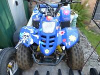 Quad Motorcycle 50 cc Excellent Condition