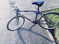 Men's Hybrid Bicycle - Perfect Condition