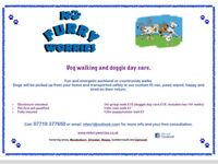 🐾No Furry Worries- dog walking/walker and doggie day care🐾