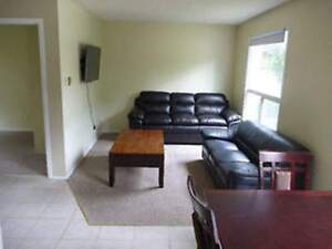 Holly Street Student Rental  - Four Bedrooms House for Rent Kitchener / Waterloo Kitchener Area image 3