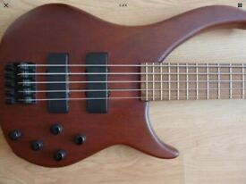 Peavey Cirrus BXP 5 string bass in great condition (Indonesian)