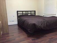Spacious double room available near reading university /palmer park 450