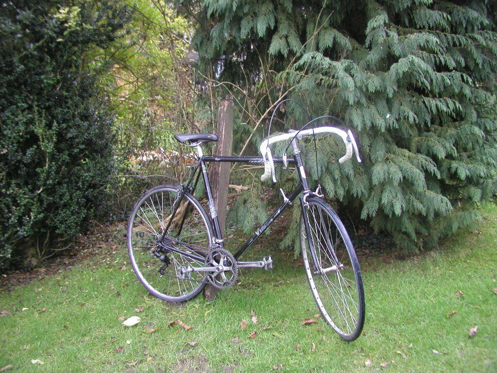 Viking Vision Reynolds 531 Vintage Racing Bike 23 In Lightweight