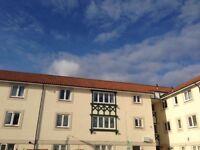 Spacious 2 Bedroom Flat for Sale Westerhope £65000