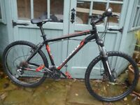SPECIALIZED HARDROCK MTB L/19in.