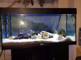 !!!Bargain!!!. 200l fishtank with cabinet,ext. Filter,sand,stones,light...delivery available