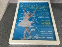 FRAMED BALLET POSTER READY TO HANG.