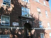 558 SHERBROOK - one bedroom available Sept1st