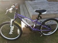 "20"" Carrera Luna Girls Bike (Good Condition)"