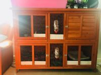 3 guinea pigs male and the female and large cage for sale