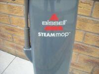 steam mop £8