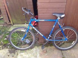 raleigh 26inc wheels chrmoutain bike
