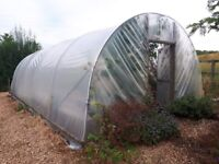 Polytunnel Greenhouse 30ft x 14ft x 8ft