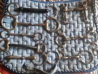 Bits. Various sizes. Mostly snaffle type