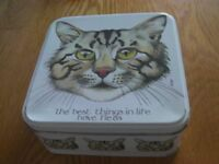Cat Lunch Box
