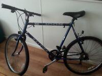 Raleigh 18 speed Man's bike