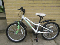 """Girl's Mountain Bike, 20"""" wheels, excellent condition"""