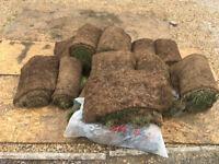 16 rolls of turf