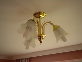 ceiling light fitting complete