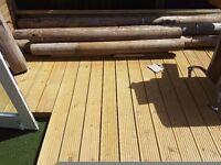 FREE logs/timber