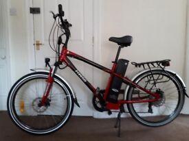 FREEGO Eagle electric bike
