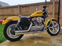 Harley-Davidson Sportster 1200 conversion