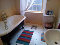Spacious and Characterful One Bed City Centre First Floor Flat for Rent