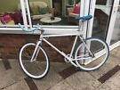 Bike - Single Speed/Fixed Gear Bike