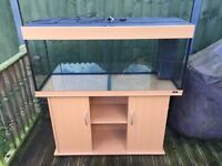 Rio 240 tank and stand in beech