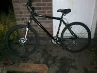 Cheap apollo mountain bike with disks