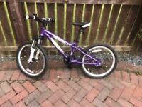 Luna Carrera 20 inch bike purple