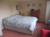 Large Double Room to Share Spacious Flat with Garden with 1 Other, near Newmarket Road