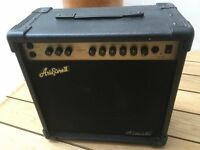 Acoustic guitar amplifier (30w) - Aria Pro II LGZ30