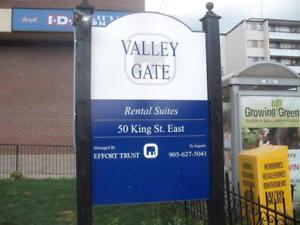 Valleygate Apartments - 1 Bedroom - Remodeled Apartment for Rent