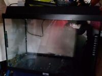 Large fish tank wih stand and useful bits