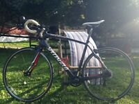 Specialized roubaix carbon road bike for sale