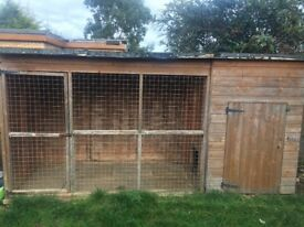 DOG KENNEL AND BIRD AVAIRY