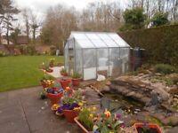 Aluminium Greenhouse (8' x 6')