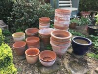 Assorted terracotta pots.