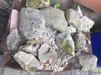 Garden Rocks Free for Collection