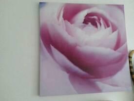 Canvas Pink flower