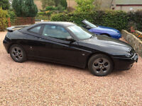 Alfa Romeo GTV - low mileage for its age