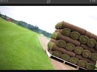 Turf Cut Fresh Daily Rolawn Britains Finest Turf Growers