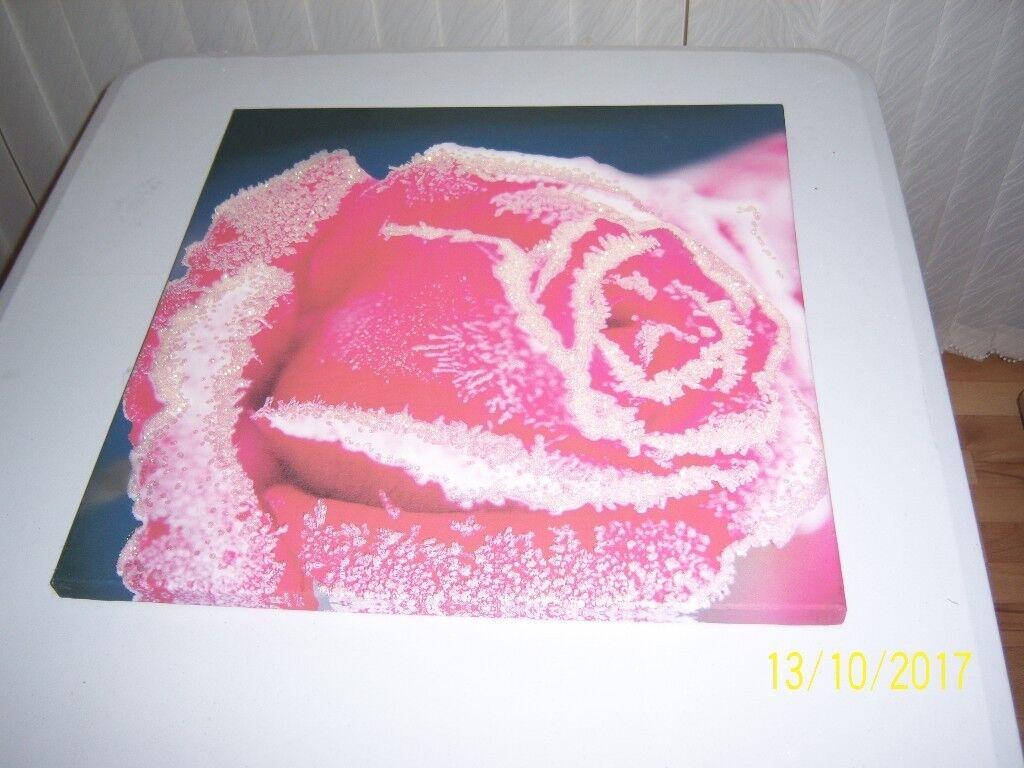 Flower Canvas Photo Print Wall Art Picture Floral 48cmx48cmH pink/blue glitter