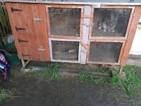 Cages for sale rabbits