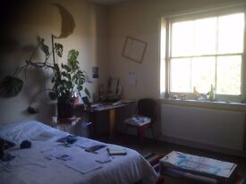 Giant double room in a spacious house with garden and friendly lovely housemates